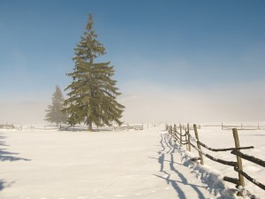 snow-country